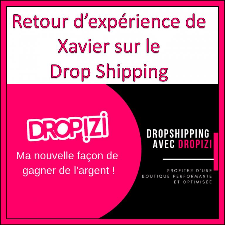 experience dropizi dropshipping